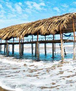 Du lịch Thạnh Phú Bến Tre (Cồn Bửng) đón gió biển hoang sơ
